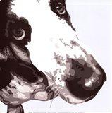 Bassett Hound Art Print