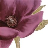 Grandiflora Blush I Art Print