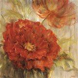 Calypso Reds I Art Print