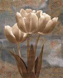 Tulip I Art Print