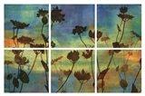 Wild Flowers I Art Print