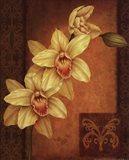 Cymbidium Orchid II Art Print