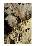 Grand Canyon of the Yellowstone River Yellowstone National Park Wyoming USA Art Print