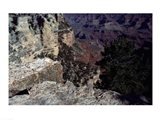 Looking Down Into the Grand Canyon Art Print