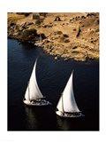 Two sailboats, Nile River, Egypt Art Print