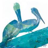 Watercolor Pelican Square II Art Print