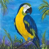 Island Birds Square II Art Print