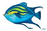 Fishy II Art Print