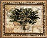 East Indies Palm Art Print