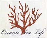 Oceanic Sea-Life Art Print