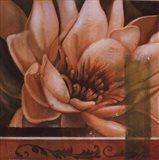 Flor de Loto II Art Print