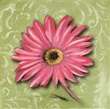 Blooming Daisy I Art Print