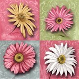 Blooming Collection I Art Print