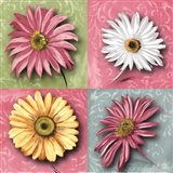 Blooming Collection II Art Print