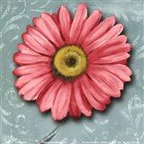 Blooming Daisy IV Art Print