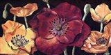 Dazzlin poppies I Art Print