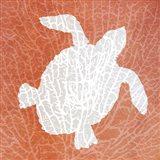 Sealife on Coral III Art Print