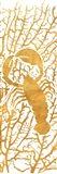 Sealife on Gold II Art Print