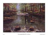 Cascading Brook II Art Print
