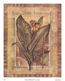 Tropical Splendor I Art Print