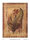 Tropical Splendor II Art Print