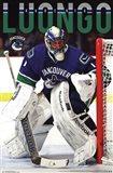 Vancouver Canucks? - R Luongo 13 Art Print