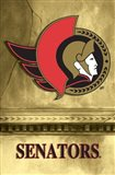 Senators - Logo 2 Art Print