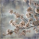 Aqua Blossoms I Art Print