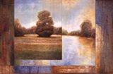 Secluded Pond II Art Print