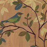 Songbird III Art Print