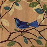 Songbird IV Art Print