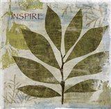 Woodland Thoughts II Art Print