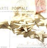 Postal Shells II Art Print