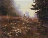 Septembers Wild Asters Art Print