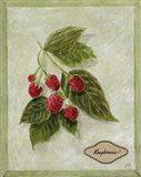 Bookplate Raspberries Art Print